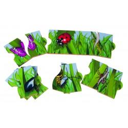 "Puzzles Infini ""Insectes"""