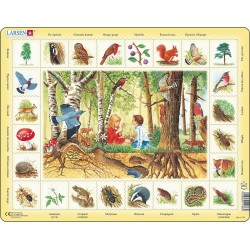 Forêt - 48 pièces
