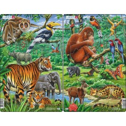 Pack 2 Puzzles : La Jungle...