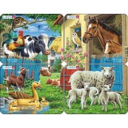 Pack 4 puzzles - Animaux de...