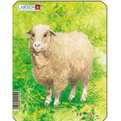 Mouton - 5 pièces