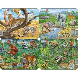 Pack 4 puzzles - Animaux...