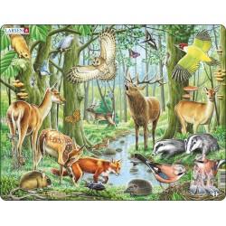 Forêt Européenne - 40 pièces