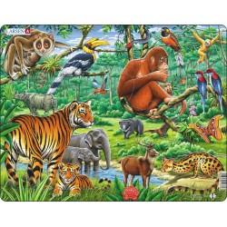 Jungle Asiatique - 20 pièces