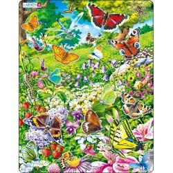 Papillons - 42 pièces
