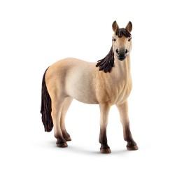 Jument - Mustang