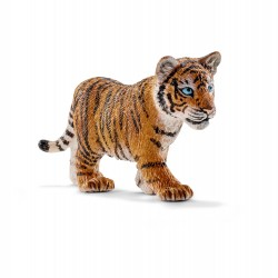Tigre du Bengale - Bébé
