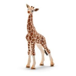 Girafe - Bébé