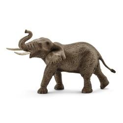 Éléphant d'Afrique - Mâle