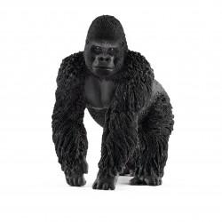 Gorille - Mâle