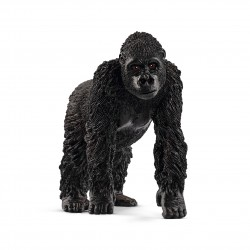Gorille - Femelle