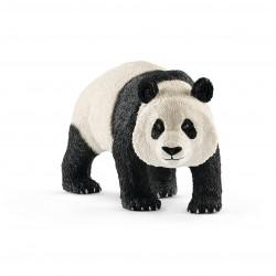 Panda Géant - Mâle